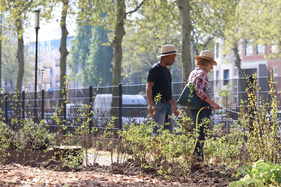 tuinmedewerkers